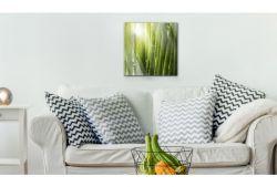 Quadro su vetro acrilico Bamboo
