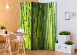 Separè  Bambù 2